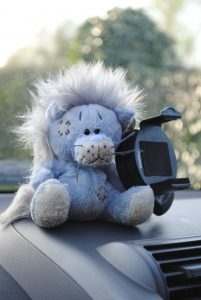 Samson Car Lion