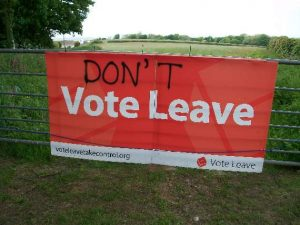 Don't Vote Leave...